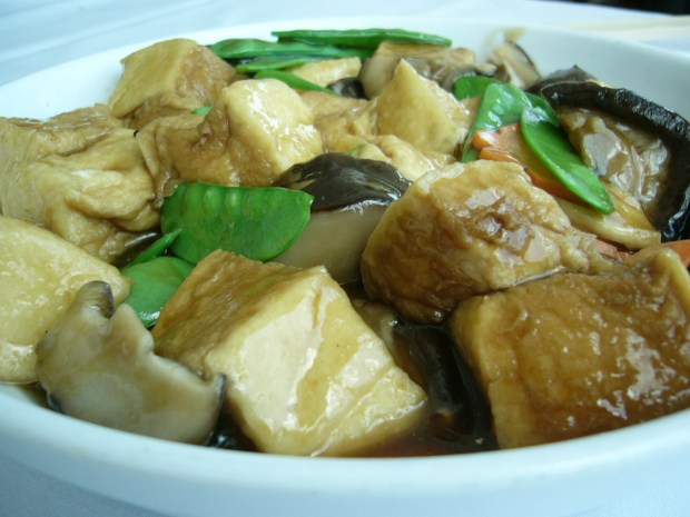 The non dim sum food, like this braised bean curd with vegetables in oyster sauce, is great too.